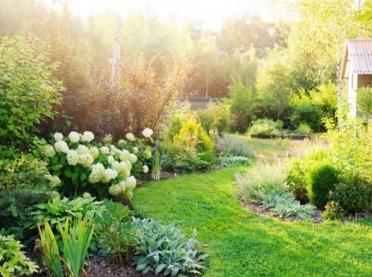 Zakładamy ogród - zaprojektuj własny kawałek raju