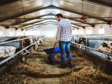 Młodzi rolnicy znów mogą ubiegać się o premię!