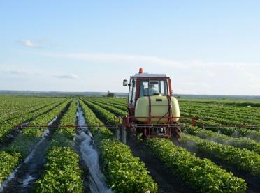 Biopreparaty w uprawie malin i truskawek