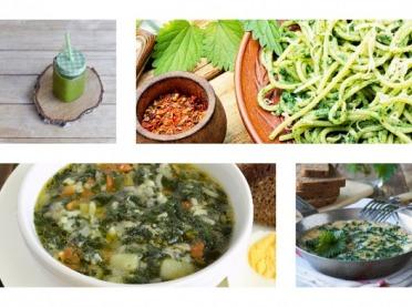 Przepisy na dania z wiosenną pokrzywą