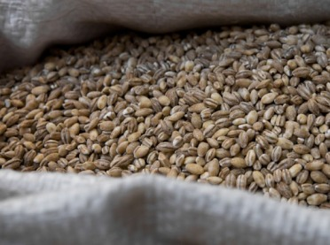 Wzrosły ceny skupu produktów rolnych