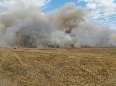Spaliło się 50 ha zboża i ścierniska