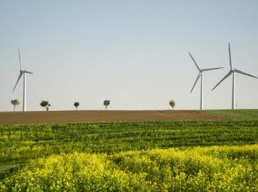 PROW 2014-2020. Zmiany wdziałaniu Rolnictwo ekologiczne od 2018 roku