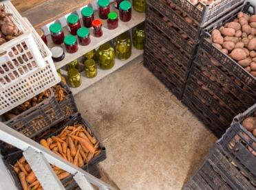 Jak prawidłowo przechowywać warzywa i owoce zimą?