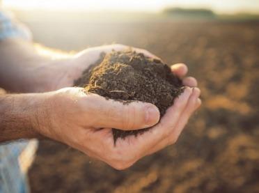 Zdrowa gleba - bardzo ważny element środowiska naturalnego
