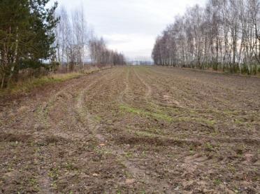 Jak zwiększyć ilość materii organicznej w glebie uprawnej?