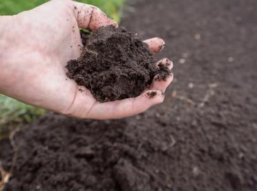 Kiedy najlepiej pobrać próby glebowe?