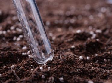 Co najczęściej badamy w glebie?