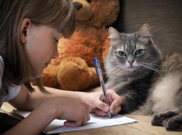 Felinoterapia, czyli niezwykła terapia z kotem