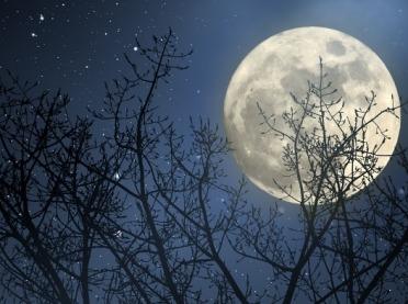 Jaki jest wpływ Księżyca na ciało i psychikę?