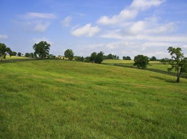 Rekultywacja łąk i pastwisk wiosną