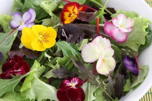 Kwiaty Jadalne Kalendarzrolnikow Pl