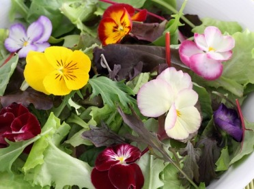 Kwiaty jadalne, czyli kolorowy bukiet na talerzu