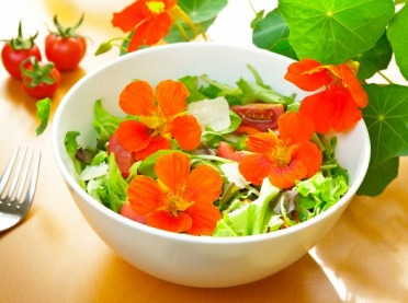 Kulinarna przygoda z kwiatami jadalnymi