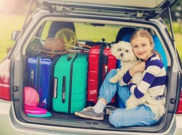 Wakacje z przyjacielem, czyli pies w podróży