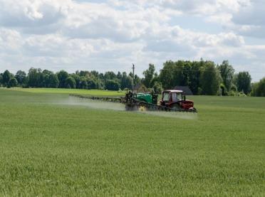 Wiosenne odchwaszczanie zbóż