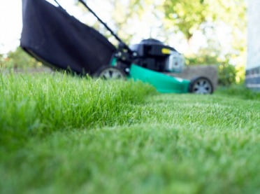 Wiosenna pielęgnacja trawnika - krok po kroku