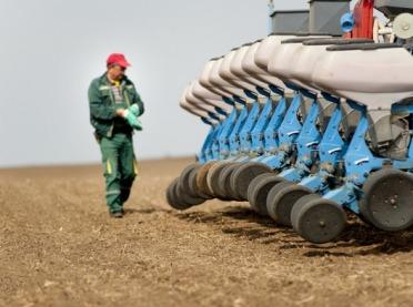 Jak przygotować pole pod zasiew kukurydzy?