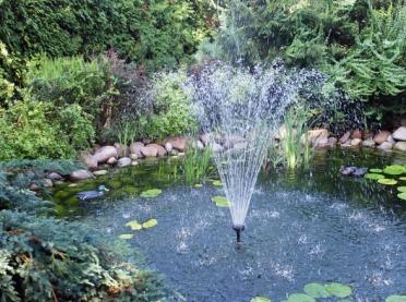 Przydomowe oczko wodne a zmiany w Prawie Wodnym