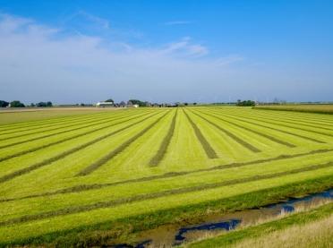 Jak założyć gospodarstwo ekologiczne?