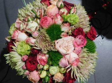 Keczup z Musztardą czyli najpiękniejsze róże ogrodowe