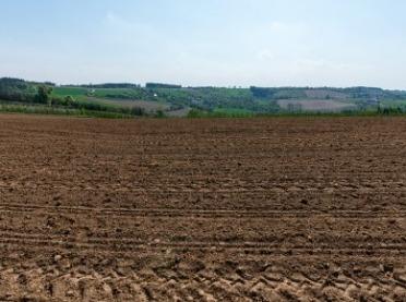 Przyczyny i skutki zakwaszania gleb oraz jak im przeciwdziałać