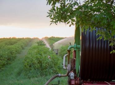 Susza rolnicza – nowa technologia w sposobie określania strat