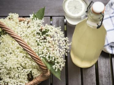 Z łąki na stół - kulinarne przepisy na wiosnę i lato