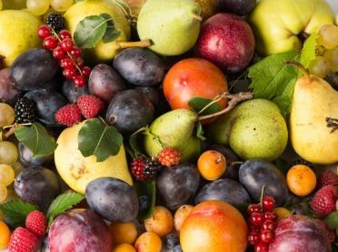 Przedstawiamy listę owocowych przebojów lata!