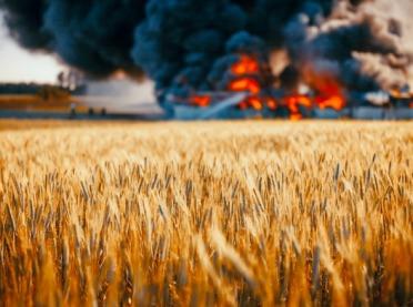 Wypadki w rolnictwie to ciągle duży problem