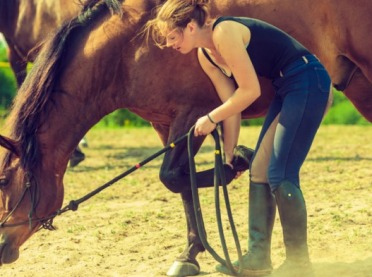 Jak założyć szkółkę jeździecką?
