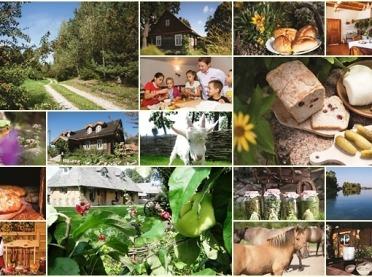 Wakacyjny wypoczynek na wsi - co warto wiedzieć?