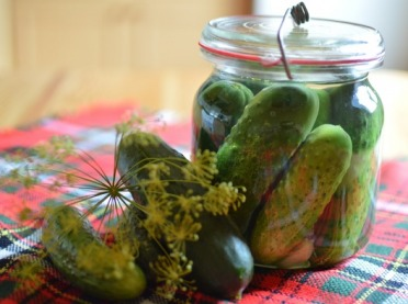 Dlaczego warto jeść kiszone ogórki?