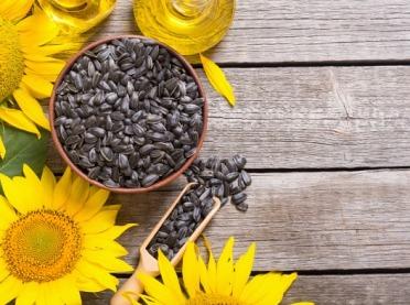 Słonecznikowe nalewki i herbatki na wiele dolegliwości