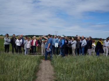 Agrotechnika w rolnictwie ekologicznym