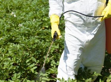 Monsanto zapłaci rekordowe odszkodowanie za Roundup choremu na nowotwór ogrodnikowi