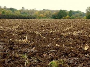 Jak poprawić żyzność gleb?