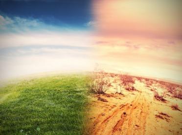 Upały, susze i choroby krążenia, czyli co nas czeka z powodu zmian klimatu