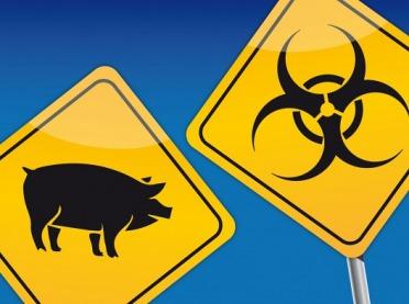 Czy jest sposób, aby zabezpieczyć gospodarstwo przed ASF – metody dezynfekcji