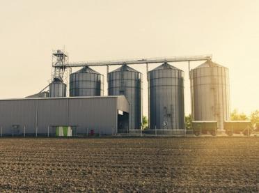 PIORiN: zboże z Ukrainy bez zagrożeń fitosanitarnych
