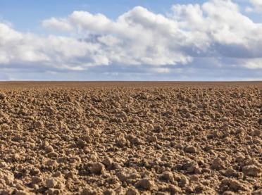 Największe zakwaszenie gleb jest w Polsce