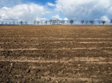 Jak zatrzymać wodę w glebie?