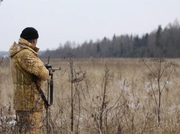 Dziki skazane na odstrzał - trwają protesty