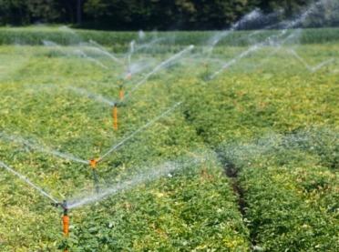 Chcesz pomóc w walce z suszą? Wypełnij ankietę!