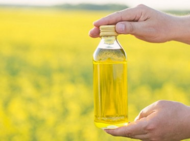 Mamy więcej oleju rzepakowego