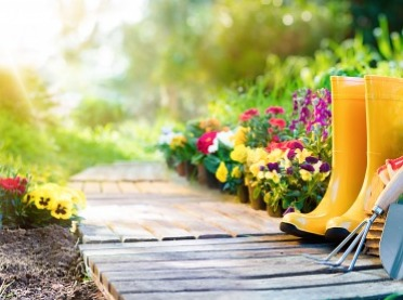 Jak stworzyć piękny ogród?