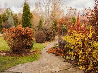 Przygotuj ogród do zimy - to najwyższy czas!