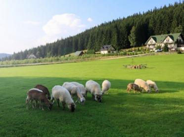 Wsparcie rolnictwa górskiego