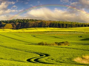 Rząd przyjął projekt ustawy dotyczący obrotu ziemią