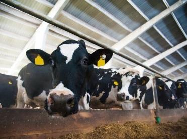 Modernizacja gospodarstw rolnych - jeszcze możesz złożyć wniosek!